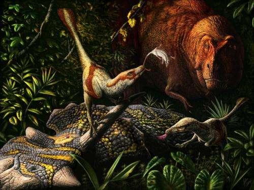 Newly discovered raptor lived alongside T. rex