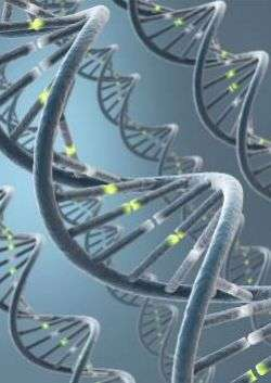 Fast new, one-step genetic engineering technology