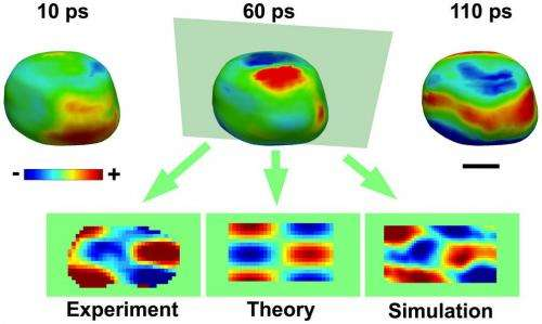 X-ray laser brings gold exploration to the nanoscale