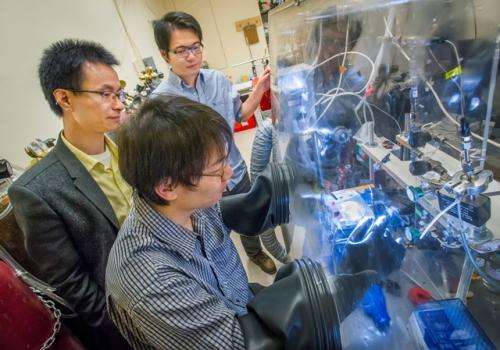 Artificial forest for solar water-splitting