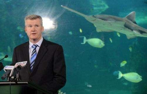 Australian Environment Minister Tony Burke speaks to the media in Sydney on November 16, 2012