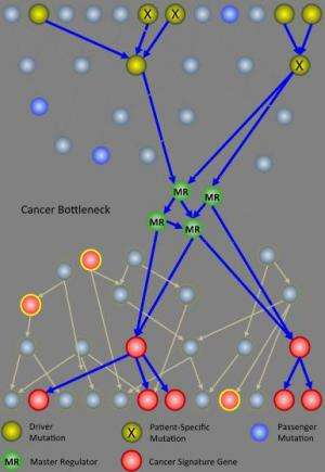 Clinical trials for cancer, 1 patient at a time