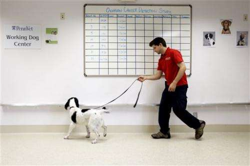 Dogs help sniff out ovarian cancer in Pa. study