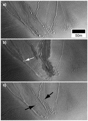 Marks on martian dunes may be tracks of dry-ice sleds
