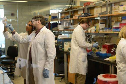 Sanford-Burnham researchers identify target to prevent hardening of arteries