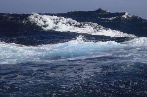 Scientists analyze the extent of ocean acidification