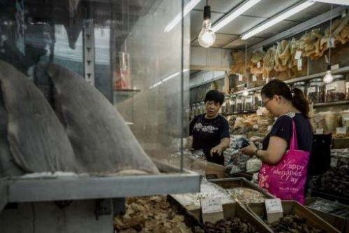 Image taken on September 5, 2012 shows a customer talking to a shopkeeper in a store selling shark fins in Hong Kong