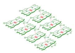 Chlorophyll harnessed for use in nanophotonic applications