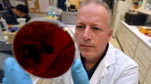 Scientists look to tackle bacterium that is major cause of diarrhea, vomiting
