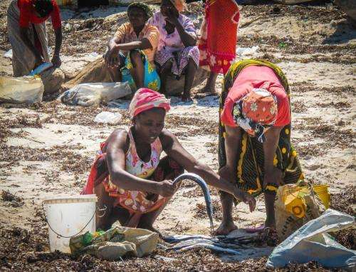 Study provides insights on protecting world's poor from climate change