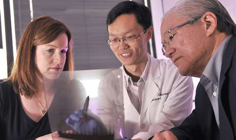 UT Southwestern researchers identify how body clock affects inflammation