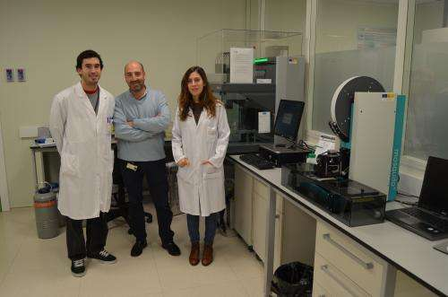 3D structure of key protein in fight against Homocystinuria unveiled