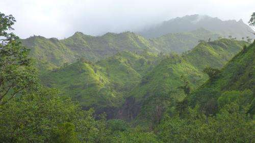 Researchers use volcanic islands to measure how rainfall sets the pace of landscape formation