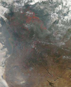 Agricultural fires in central Africa