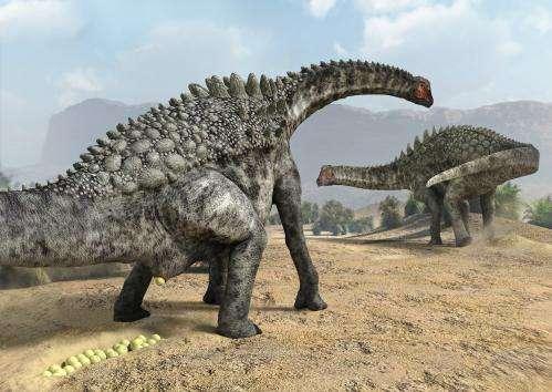 Four Dinosaur Egg Species Identified In Lleida