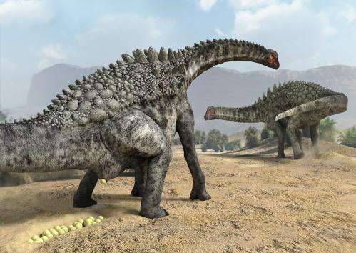 4 dinosaur egg species identified in Lleida