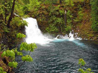 Global warming to cut snow water storage 56 percent in Oregon watershed
