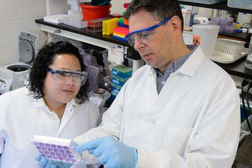 Researchers develop 'SMART' vaccines that are safe, effective