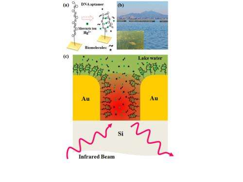 Development of high sensitivity detection method for diluted ionic mercury in water