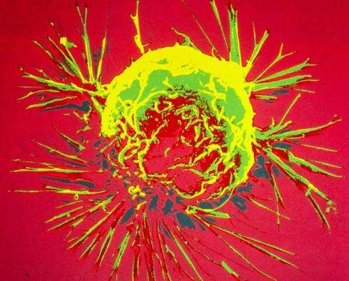 Evolutionary theory of cancer overlooks genetic research