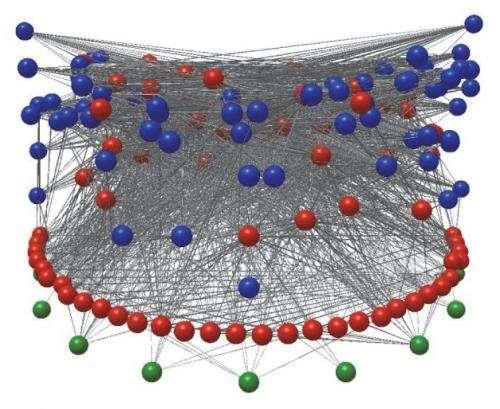 Do parasites upset food web theory?