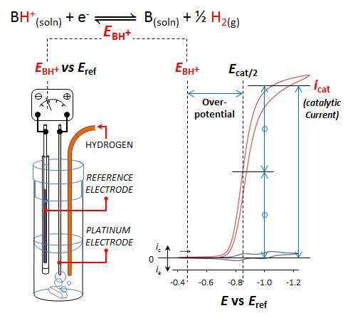 New technique allows scientists to directly compare catalysts' efficiency in different situations