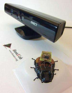 Researchers use video game tech to steer roaches on autopilot