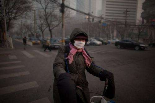 A cyclist wearing a mask prepares to cross a road during severe pollution in Beijing on January 12, 2013