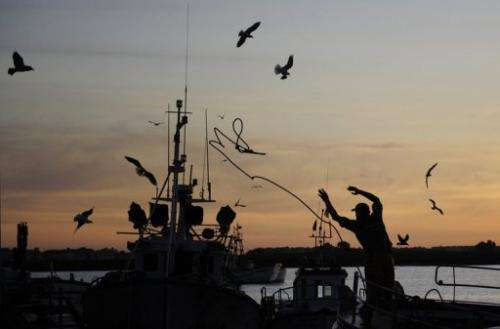 A fishing boat anchors at the fishing port of Isla Cristina, southern Spain, on December 15, 2011
