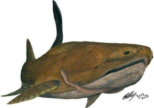 A life restoration of an Entelognathus, an old armoured fish