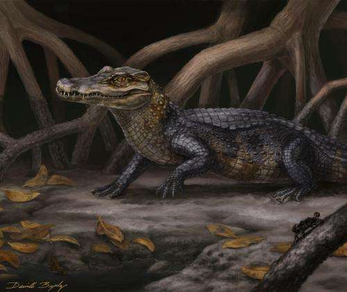 Alligator relatives slipped across ancient seaways