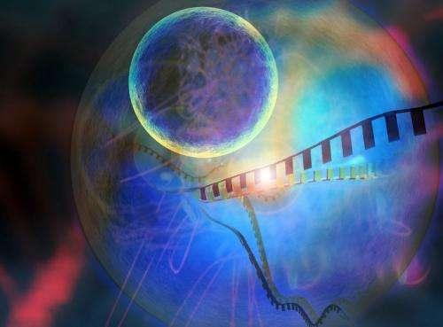 A Molecular Toolkit for Gene Silencing