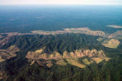 An aerial image of the deforestation next to Indio's reservation area in Para state, northern Brazil, on August 9, 2013