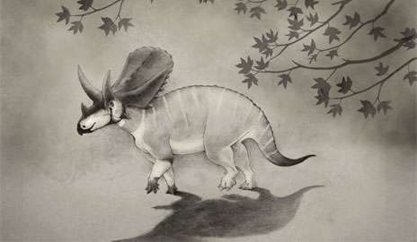 Ancient cousin of Triceratops highlights turnover among horned dinosaurs