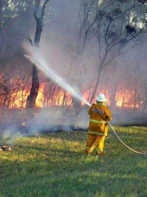 A New South Wales Rural Fire Service picture issued on January 8, 2013 shows a bushfire near Green Point