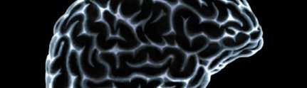 A new tool for brain research