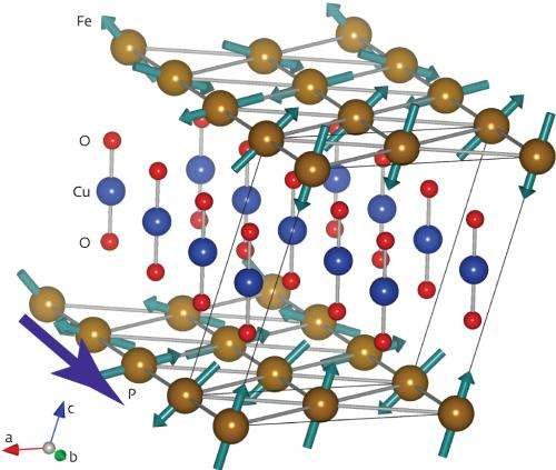 A new way in which magnetism and electric polarization are coupled has been discovered in CuFeO2