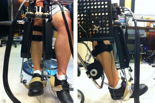 'Anklebot' helps determine ankle stiffness