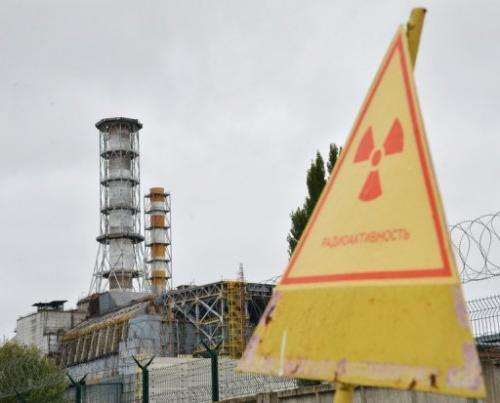 A radioactive sign near a shelter and containment area at Chernobyl's old nuclear power plant is seen on August 25, 2013