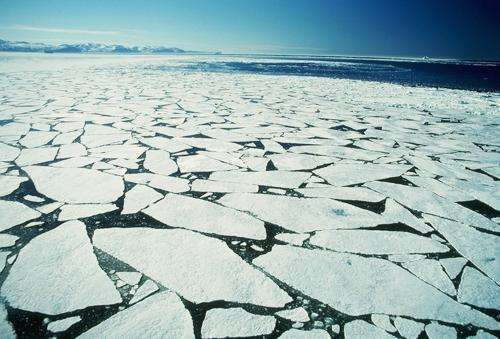 Arctic current flowed under deep freeze of last ice age, study says