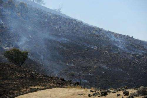 A scrubfire burns a hillside south of Bookham, near Yass in New South Wales state, on January 11, 2013