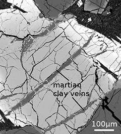Astrobiologists find Martian clay contains chemical implicated in the origin of life