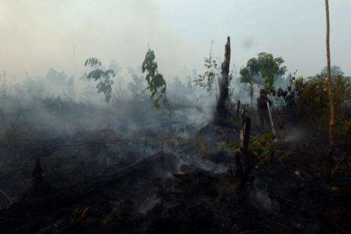 A worker from a palm oil concession company, seen at right, extinguishes forest fire on Sumatra island, on June 29, 2013