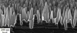 Black silicon can take efficiency of solar cells to new levels