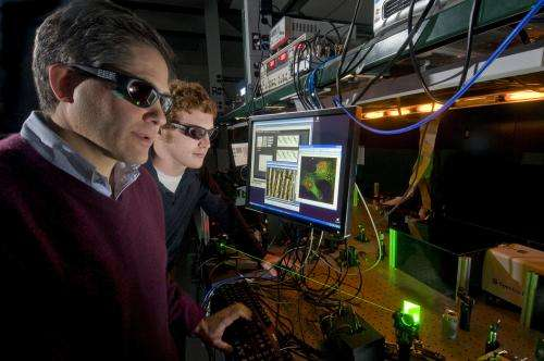Bomb-detecting lasers could improve security checkpoints