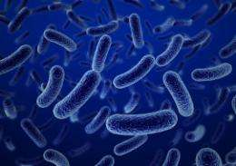 Can probiotics keep my gastrointestinal system healthy?