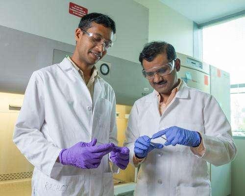 Cells prefer nanodiscs over nanorods