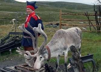 Chemicals pollutants threaten health in the Arctic
