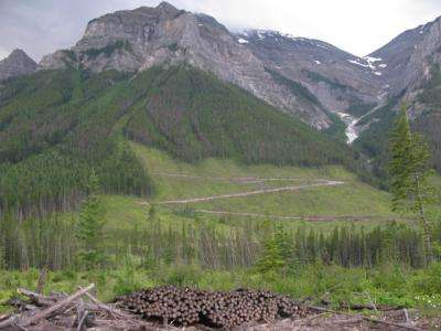 'Climate-smart strategies' proposed for spectacular US-Canadian landscape