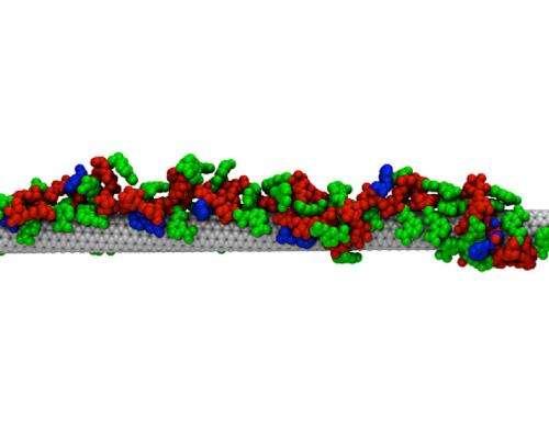 Creating synthetic antibodies